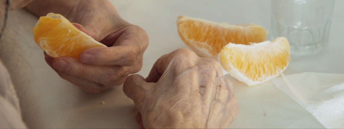 Orangers en fleur slider_1